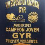 Campeon Nacional Joven Gyr 2013